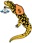 tyger money salamander