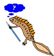 newton thinking image