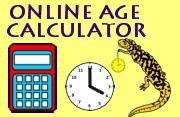 online age calculator image