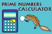Prime Numbers Calculator image
